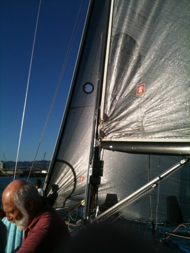 Pineapple Sails