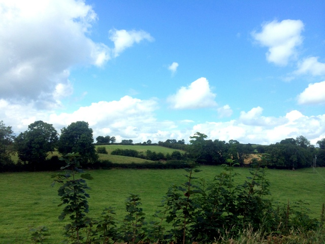 The sun did eventually make an appearance!  Keep Ireland green -- this bucolic country side is second to none.