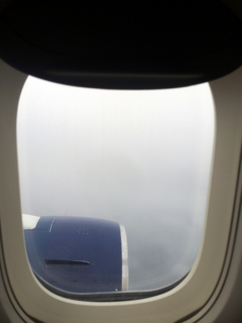 Landing on a typical Irish day.  This is why they need to make quality PVC covers!